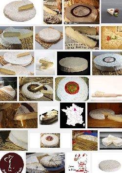 Brie de Melun (aoc-aop)